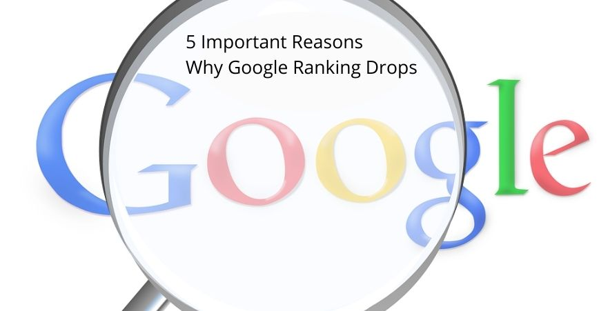 5 Important Reasons Why Google Ranking Drops
